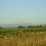 mounthood2_or