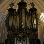 ariquipa_greatest-organ-of-southamerica
