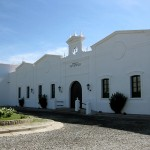 10_cafayate-vineyard1