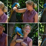 15-bird-park_parot-is-kiding-with-silke
