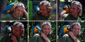 15-bird-park_parot-is-kiding-with-stefan